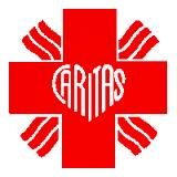 MIŁOSIERNI CZYNEM  List pasterski Episkopatu Polski o posłudze charytatywnej w Roku Miłosierdzia